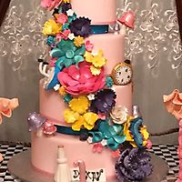 Party cake _6